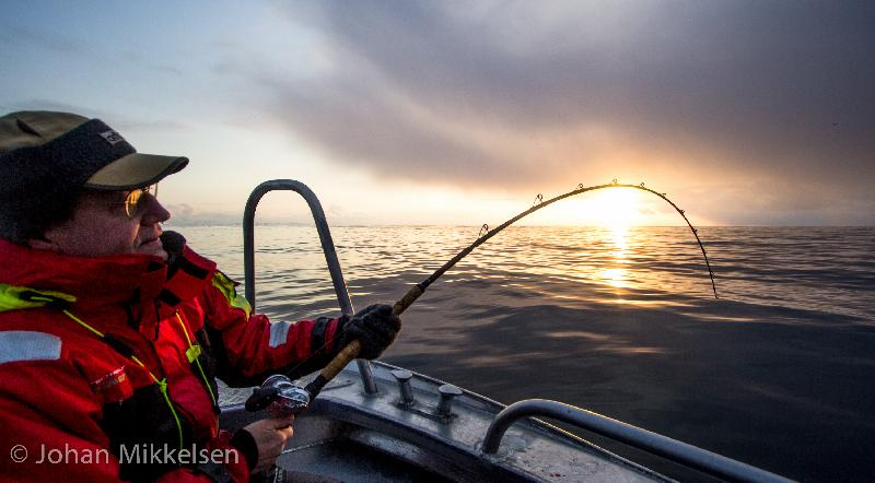 Carsten Vs big cod in sunset!